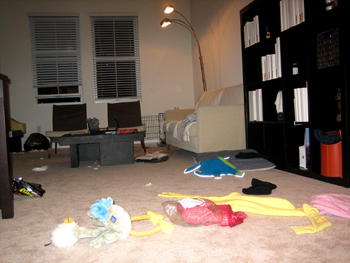 20061127-house-run.jpg