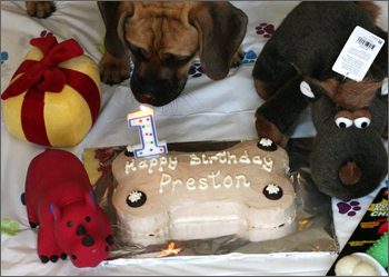 Preston_bday_cake
